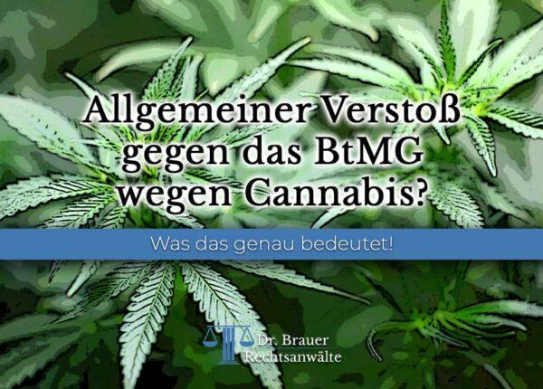 Allgemeiner Verstoß gegen das BtMG wegen Cannabis?