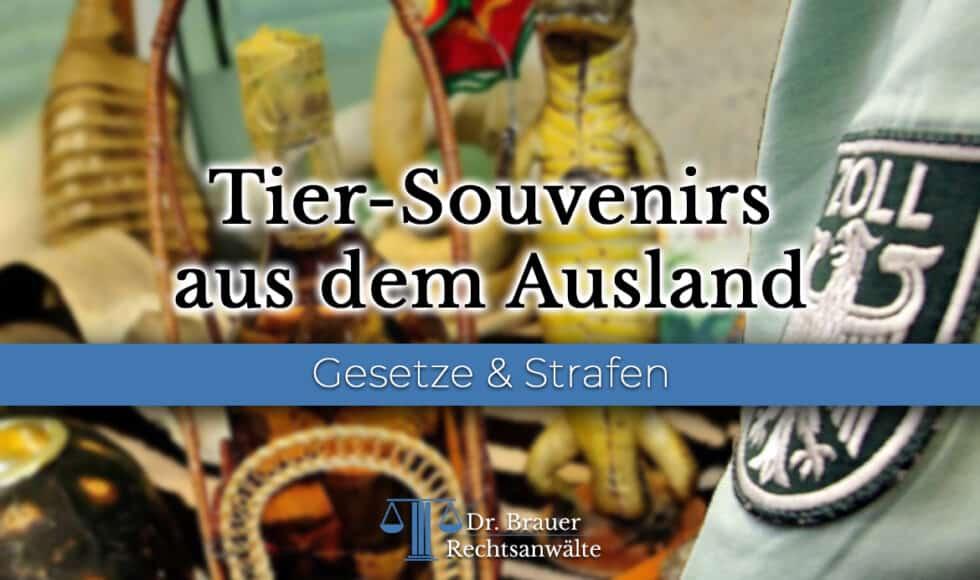Pelz im Ausland gekauft - Darf ich Tier-Souvenirs nach Deutschland einführen?